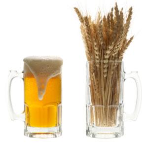 Las cervezas de trigo y el sabor a plátano y clavo: la clave está en la levadura